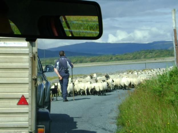 07 Traffic Jam
